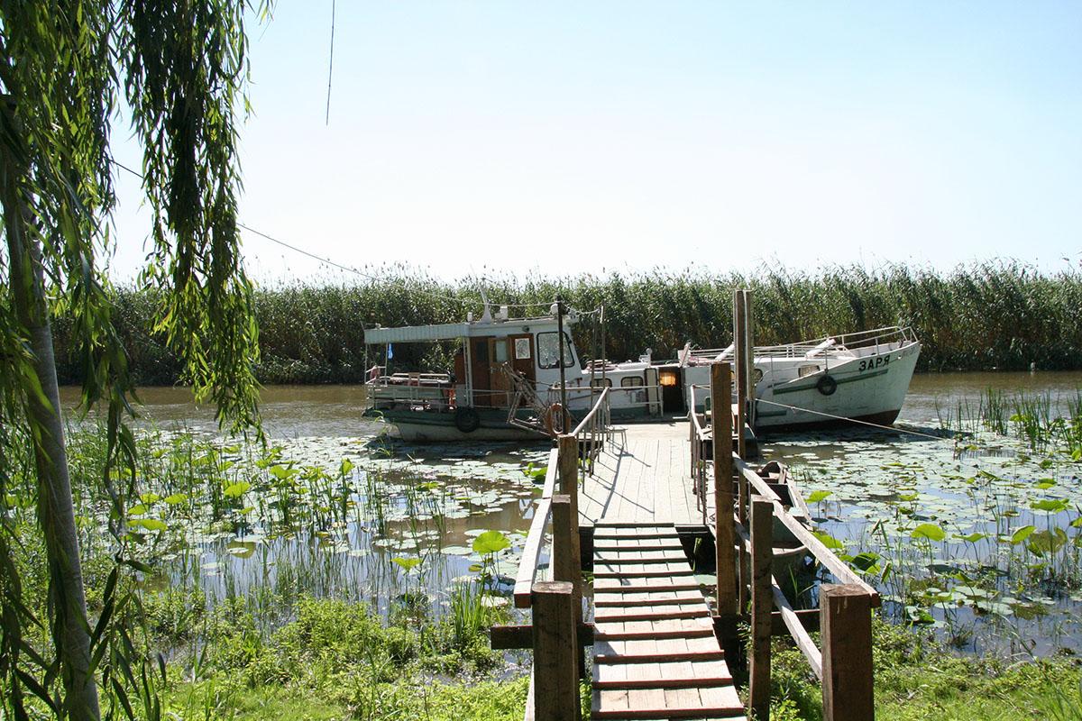 Платные озера в подмосковье для рыбалки