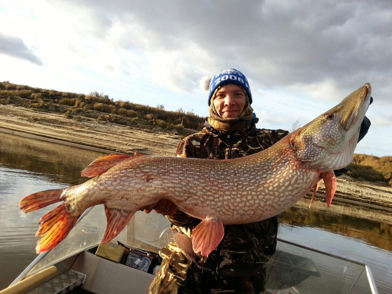 Рыбалка в Ханты-Мансийске: какая рыба водится в реках