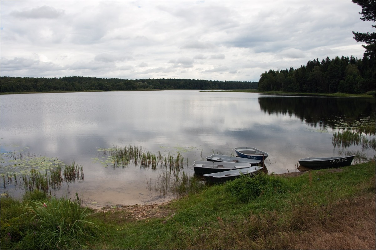 Ладожское озеро фото под водой санузлами